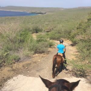 paardrijden-op-curacao-04