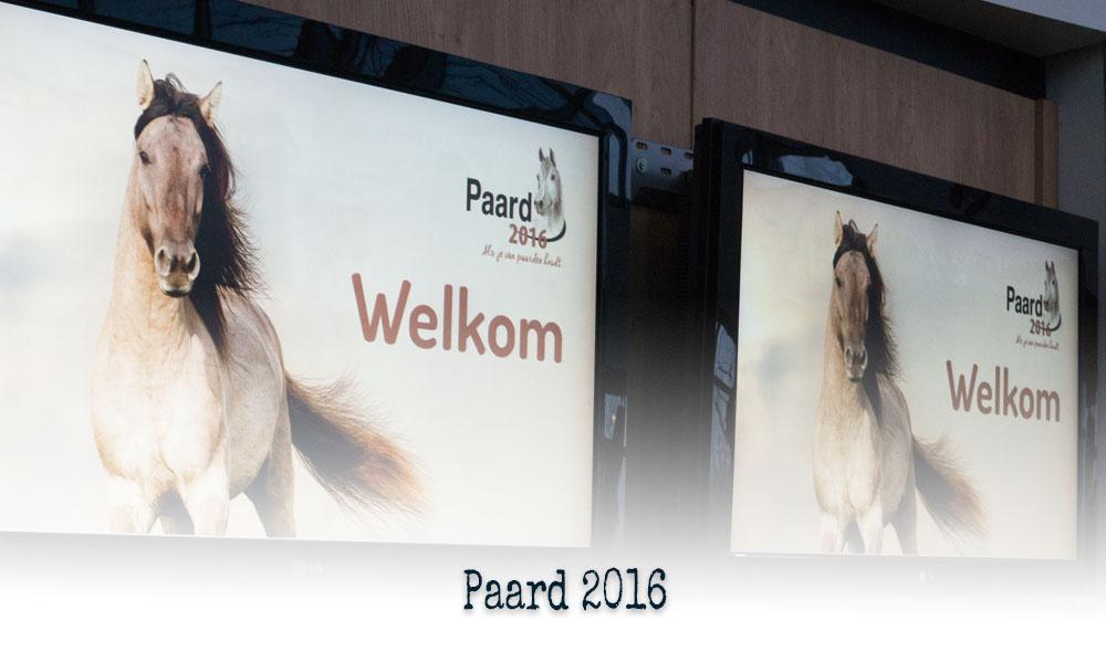 Paard 2016