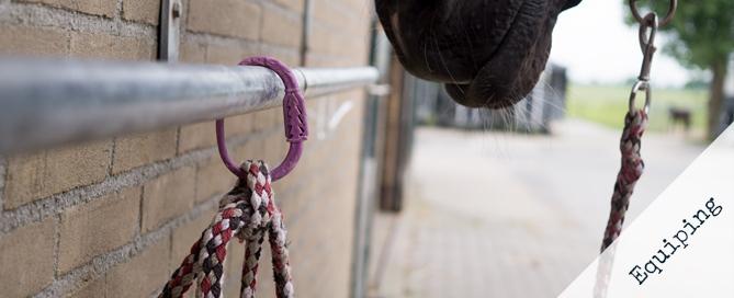 Equi-ping: De oplossing voor paarden die hangen